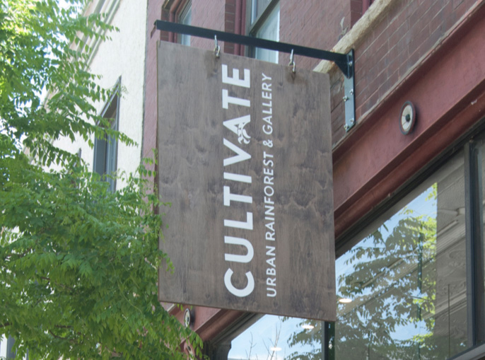 Photo of the Cultivate store sign seen from the street